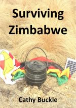 Surviving Zimbabwe